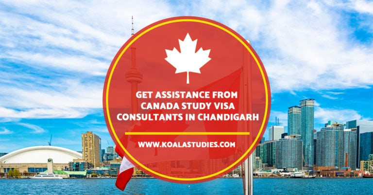 Get assistance from Canada study visa consultants in Chandigarh
